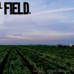 El Field. Home Page