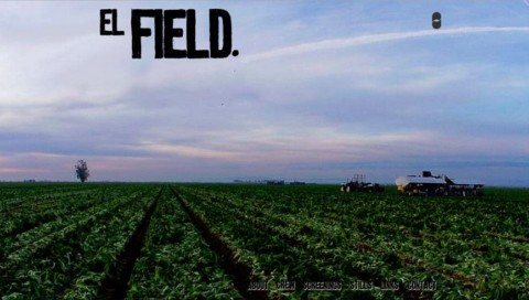 El Field. Home Page